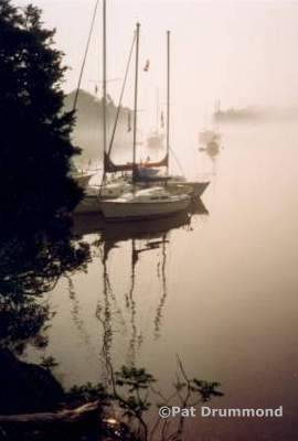 Endymion Island, morning fog
